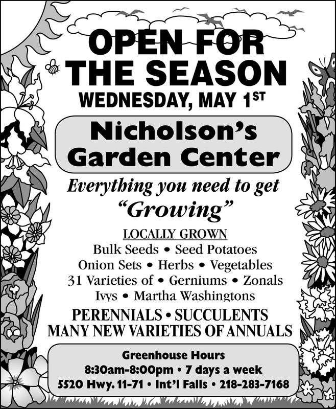 "OPEN FOR& THE SEASONWEDNESDAY, MAY 1STNicholson'sGarden CenterEverything you need to get""Growing2>LOCALLY GROWNBulk Seeds » Seed PotatoesOnion Sets . Herbs . Vegetables31 Varieties of . Gerniums Zonalslys . Martha WashingtonsPERENNIALS .SUCCULENTSMANY NEW VARIETIES OF ANNUALSGreenhouse Hours8:30am-8:00pm * 7 days a week5520 Hwy. 11-71 Int'l Falls 218-283-7168 OPEN FOR & THE SEASON WEDNESDAY, MAY 1ST Nicholson's Garden Center Everything you need to get ""Growing 2> LOCALLY GROWN Bulk Seeds » Seed Potatoes Onion Sets . Herbs . Vegetables 31 Varieties of . Gerniums Zonals lys . Martha Washingtons PERENNIALS .SUCCULENTS MANY NEW VARIETIES OF ANNUALS Greenhouse Hours 8:30am-8:00pm * 7 days a week 5520 Hwy. 11-71 Int'l Falls 218-283-7168"