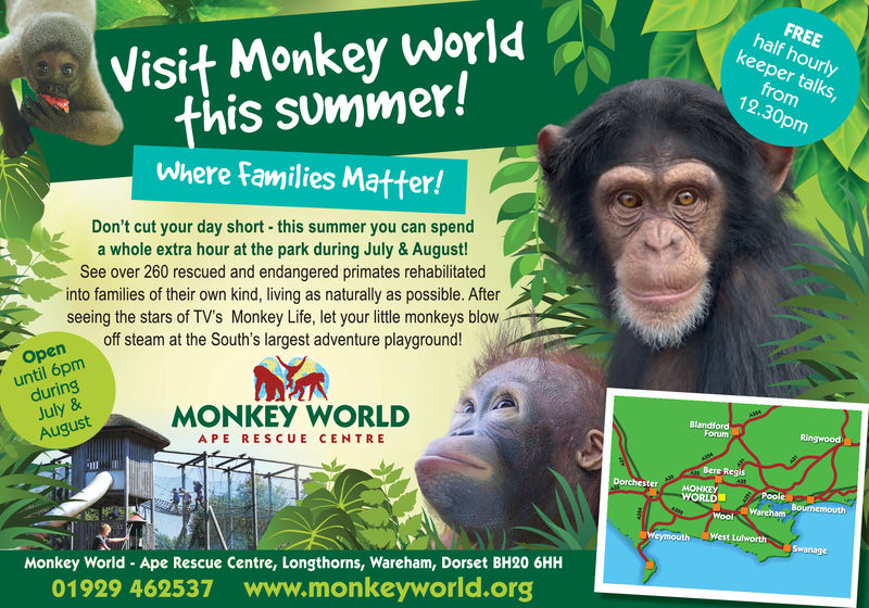 Visit Monkey Worldthis summer!Where Families Matter!FREEhalf hourlykeeper talksfrom12.30pmDon't cut your day short - this summer you can spenda whole extra hour at the park during July & August!See over 260 rescued and endangered primates rehabilitatedinto families of their own kind, living as naturally as possible. Afterseeing the stars of TV's Monkey Life, let your little monkeys blowff steam at the South's largest adventure playground!Openuntil 6pmduringJuly &Augustuntil 6pm Otea sMONKEY WORLDBlanForumAPE RESCUE CENTREBere RegisWORLDPoole OWoolWarehamMonkey World Ape Rescue Centre, Longthorns, Wareham, Dorset BH20 6HH01929 462537 www.monkeyworid.org Visit Monkey World this summer! Where Families Matter! FREE half hourly keeper talks from 12.30pm Don't cut your day short - this summer you can spend a whole extra hour at the park during July & August! See over 260 rescued and endangered primates rehabilitated into families of their own kind, living as naturally as possible. After seeing the stars of TV's Monkey Life, let your little monkeys blow ff steam at the South's largest adventure playground! Open until 6pm during July & August until 6pm Otea s MONKEY WORLD Blan Forum APE RESCUE CENTRE  Bere Regis WORLD Poole O WoolWareham Monkey World Ape Rescue Centre, Longthorns, Wareham, Dorset BH20 6HH 01929 462537 www.monkeyworid.org