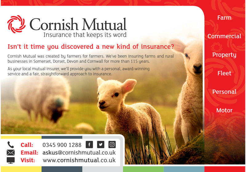 FarmCornish MutualInsurance that keeps its wordCommercialIsn't it time you discovered a new kind of insurance'?PropertyCornish Mutual was created by farmers for farmers. We've been insuring farms and ruralbusinesses in Somerset, Dorset, Devon and Cornwall for more than 115 years.As your local mutual insurer, we'll provide you with a personal, award-winningservice and a fair, straightforward approach to insurance.FleetPersonalMotorcall: 0345 900 1288* call: 0345 900 1288 fEmail: askus@cornishmutual.co.ukVisit: www.cornishmutual.co.uk Farm Cornish Mutual Insurance that keeps its word Commercial Isn't it time you discovered a new kind of insurance'? Property Cornish Mutual was created by farmers for farmers. We've been insuring farms and rural businesses in Somerset, Dorset, Devon and Cornwall for more than 115 years. As your local mutual insurer, we'll provide you with a personal, award-winning service and a fair, straightforward approach to insurance. Fleet Personal Motor call: 0345 900 1288 * call: 0345 900 1288 f Email: askus@cornishmutual.co.uk Visit: www.cornishmutual.co.uk