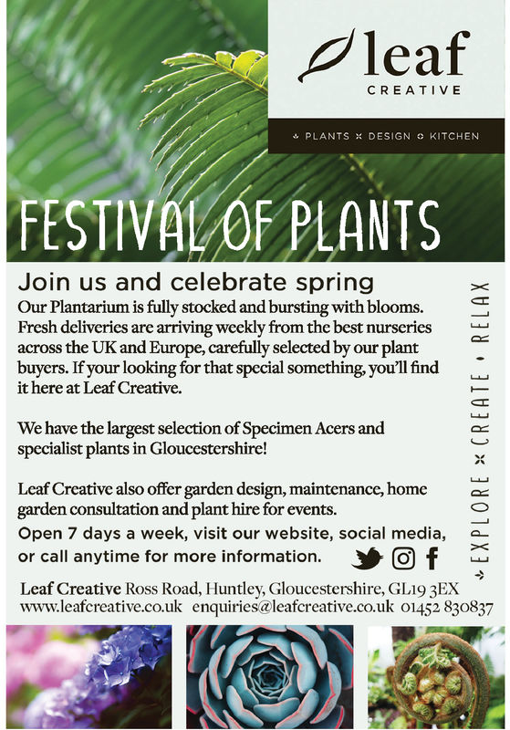 PleafCREATIVEPLANTS % DESIGN o KITCHENFESTIVAL OF PLANTSJoin us and celebrate springOur Plantarium is fully stocked and bursting with blooms.Fresh deliveries are arriving weekly from the best nurseries_across the UK and Europe, carefully selected by our plantbuyers. If your looking for that special something, you'll findit here at Leaf Creative.OXWe have the largest selection of Specimen Acers andspecialist plants in Gloucestershire!Leaf Creative also offer garden design, maintenance, homegarden consultation and plant hire for events.Open 7 days a week, visit our website, social media,or call anytime for more information.Leaf Creative Ross Road, Huntley, Gloucestershire, GL19 3EXwww.leafcreative.co.uk enquiries@leafcreative.co.uk 01452 830837