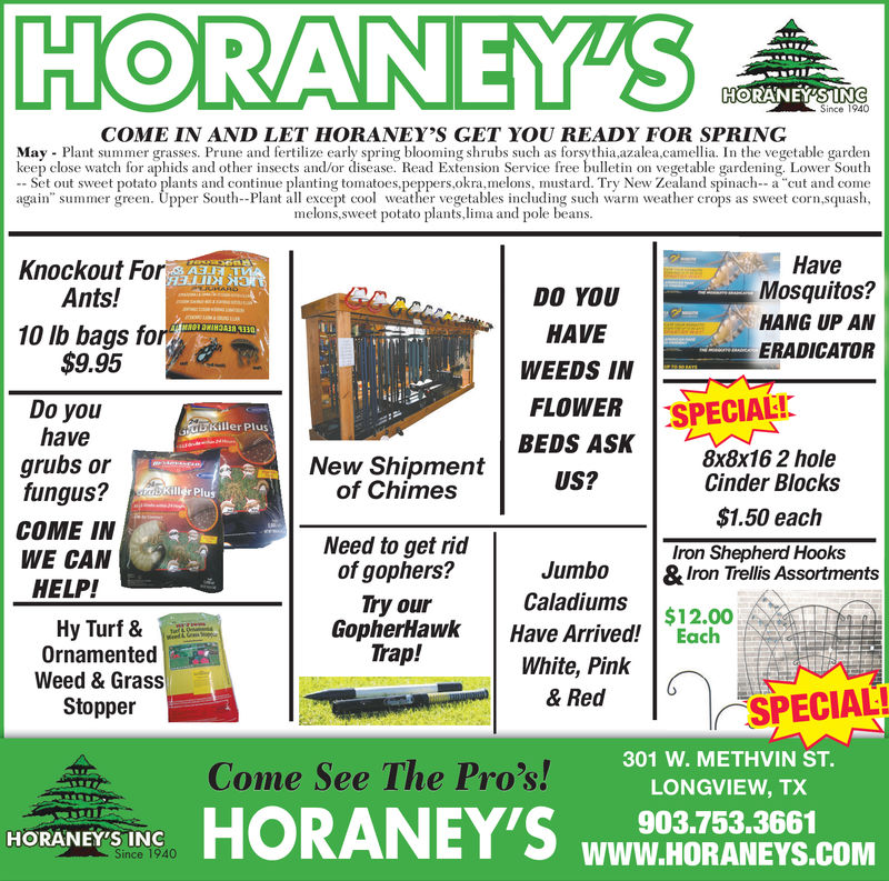 "HORANEYSSince 1940COME IN AND LET HORANEY'S GET YOU READY FOR SPRINGMay Plant summer grasses. Prune and fertilize early spring blooming shrubs such as forsythia azalea,camellia. In the vegetable gardenkeep close watch for aphids and other insects and/or disease. Read Extension Service free bulletin on vegetable gardening. Lower SouthSet out sweet potato plants and continue planting tomatoes.peppers,okra,melons, mustard. Try New Zealand spinach--a cut and comeagain"" summer green. Upper South-Plant all excepto weher vegetables including such warm weather crops as sweet corn,squash,melons,sweet potato plants,lima and pole beansHaveKnockout ForAnts!Mosquitos?DO YOUHANG UP AN10 lb bags forI$9.95HAVEERADICATORWEEDS IMNFLOWER SPECIALIDo youhaveKiller PlusBEDS ASK8x8x16 2 holeCinder Blocksgrubs orfungus?New Shipmentof ChimesUS?uS$1.50 eachCOME INWE CANHELP!Need to get ridof gophers?Iron Shepherd HooksJumbo &Iron Trellis AssortmentsCaladiums .. $12.00Try ourGopherHawk Have ArrivedEachTrap!Hy Turf &OrnamentedWeed & GrassStopperWhite, Pinlk& RedSPECIAL!Come See The Pros! B LONGVIEW TC301 W. METHVIN ST.LONGVIEW, TX903.753.3661WWW.HORANEYS.COMHORANEY'S INC HORANEYS Since 1940 COME IN AND LET HORANEY'S GET YOU READY FOR SPRING May Plant summer grasses. Prune and fertilize early spring blooming shrubs such as forsythia azalea,camellia. In the vegetable garden keep close watch for aphids and other insects and/or disease. Read Extension Service free bulletin on vegetable gardening. Lower South Set out sweet potato plants and continue planting tomatoes.peppers,okra,melons, mustard. Try New Zealand spinach--a cut and come again"" summer green. Upper South-Plant all excepto weher vegetables including such warm weather crops as sweet corn,squash, melons,sweet potato plants,lima and pole beans Have Knockout For Ants! Mosquitos? DO YOU HANG UP AN 10 lb bags forI $9.95 HAVE ERADICATOR WEEDS IMN FLOWER SPECIALI Do you have Killer Plus BEDS ASK 8x8x16 2 hole Cinder Blocks grubs or fungus? New Shipment of Chimes US? uS $1.50 each COME IN WE CAN HELP! Need to get rid of gophers? Iron Shepherd Hooks Jumbo &Iron Trellis Assortments Caladiums .. $ 12.00 Try our GopherHawk Have ArrivedEach Trap! Hy Turf & Ornamented Weed & Grass Stopper White, Pinlk & Red  SPECIAL ! Come See The Pros! B LONGVIEW TC 301 W. METHVIN ST. LONGVIEW, TX 903.753.3661 WWW.HORANEYS.COM HORANEY'S INC"