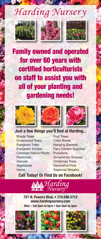 Harding NurseryFamily owned and operatedfor over 60 years withcertified horticulturistson staff to assist you withall of your planting andgardening needs!Just a few things you'll find at Harding...Fruit TreesShade TreesOrnamental TreesColor BowlsHanging BasketsFairy Garden SuppliesPumpkinsEvergreen TreesEvergreen ShrubsColorado Native Plants.PerennialsOrnamental GrassesAnnualsChristmas TreesVegetablesDecorative PotsSeasonal WreathsHerbsCall Today! Or Find Us on Facebook!AAAHardingNursery721 N. Powers Blvd. 719.596.5712www.hardingnursery.comMon Sat 8am to 6pmSun 9am to 5pm Harding Nursery Family owned and operated for over 60 years with certified horticulturists on staff to assist you with all of your planting and gardening needs! Just a few things you'll find at Harding... Fruit Trees Shade Trees Ornamental Trees Color Bowls Hanging Baskets Fairy Garden Supplies Pumpkins Evergreen Trees Evergreen Shrubs Colorado Native Plants. Perennials Ornamental Grasses Annuals Christmas Trees Vegetables Decorative Pots Seasonal Wreaths Herbs Call Today! Or Find Us on Facebook! AAAHarding Nursery 721 N. Powers Blvd. 719.596.5712 www.hardingnursery.com Mon Sat 8am to 6pm Sun 9am to 5pm