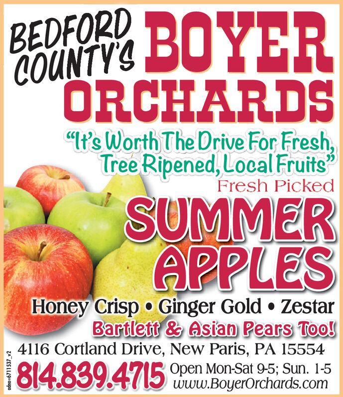 "BEDFORDCOUNTY'SORCHARDS""t's Worth The Drive For Fresh,Tree Ripened, Local FruitsFresh PickedSUMMERAPPLESHoney Crisp Ginger Gold ZestarBartlett & Asian Pears Too!4116 Cortland Drive, New Paris, PA 15554814.839.4715Open Mon-Sat 9-5; Sun. 1-5www.BoyerOrchards.com BEDFORD COUNTY'S ORCHARDS ""t's Worth The Drive For Fresh, Tree Ripened, Local Fruits Fresh Picked SUMMER APPLES Honey Crisp Ginger Gold Zestar Bartlett & Asian Pears Too! 4116 Cortland Drive, New Paris, PA 15554 814.839.4715 Open Mon-Sat 9-5; Sun. 1-5 www.BoyerOrchards.com"