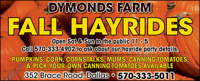 DYMONDS FARMFALL HAYRIDESOpen Sat & Sun to the public 11 5Call 570-333-4902 to ask about our hayride party details.PUMPKINS, CORN, CORNSTALKS, MUMS, CANNING TOMATOES,& PICK-YOUR-OWN CANNING TOMATOES AVAILABLE352 Brace Road, Dallas 570-333-5011 DYMONDS FARM FALL HAYRIDES Open Sat & Sun to the public 11 5 Call 570-333-4902 to ask about our hayride party details. PUMPKINS, CORN, CORNSTALKS, MUMS, CANNING TOMATOES, & PICK-YOUR-OWN CANNING TOMATOES AVAILABLE 352 Brace Road, Dallas 570-333-5011