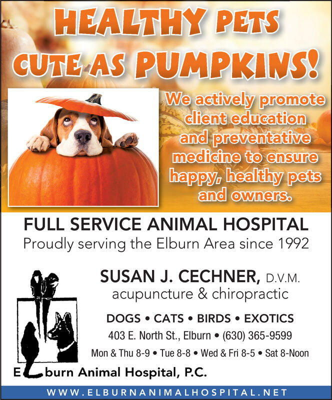 HEALTHY PETSCUTE AS PUMPKINS!We actively promoteclient educationand preventativemedicine to ensurehappy healthy petsand owners.FULL SERVICE ANIMAL HOSPITALProudly serving the Elburn Area since 1992SUSAN J. CECHNER, D.V.Macupuncture & chiropracticDOGS CATS BIRDS EXOTICS403 E. North St., Elburn . (630) 365-9599Mon & Thu 8-9. Tue 8-8Wed & Fri 8-5 Sat 8-Noonburn Animal Hospital, P.CEwww.ELBURNANIMALHOSPITAL.NET HEALTHY PETS CUTE AS PUMPKINS! We actively promote client education and preventative medicine to ensure happy healthy pets and owners. FULL SERVICE ANIMAL HOSPITAL Proudly serving the Elburn Area since 1992 SUSAN J. CECHNER, D.V.M acupuncture & chiropractic DOGS CATS BIRDS EXOTICS 403 E. North St., Elburn . (630) 365-9599 Mon & Thu 8-9. Tue 8-8 Wed & Fri 8-5 Sat 8-Noon burn Animal Hospital, P.C E www.ELBURNANIMALHOSPITAL.NET