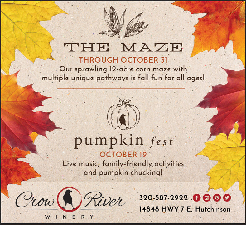 THE MAZETHROUGH OCTOBER 31Our sprawling 12-acre corn maze withmultiple unique pathways is fall fun for all ages!pumpkin festOCTOBER 19Live music, family-friendly activitiesand pumpkin chucking!Crow Rver320-587-2922.f14848 HWY 7 E, HutchinsonWIN E RY THE MAZE THROUGH OCTOBER 31 Our sprawling 12-acre corn maze with multiple unique pathways is fall fun for all ages! pumpkin fest OCTOBER 19 Live music, family-friendly activities and pumpkin chucking! Crow Rver 320-587-2922.f 14848 HWY 7 E, Hutchinson WIN E RY