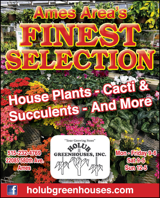 """Ames Area'sFINESTSELECTIONHouse Plants Cacti &Succulents And More""""Your Growing Store""""WOLUBMon-Friday 9-0Sat 9-5Sun 12-5515-232-476922085580th AveAmesGREENHOUSES, INC.holubgreenhouses.com Ames Area's FINEST SELECTION House Plants Cacti & Succulents And More """"Your Growing Store"""" WOLUB Mon-Friday 9-0 Sat 9-5 Sun 12-5 515-232-4769 22085580th Ave Ames GREENHOUSES, INC. holubgreenhouses.com"""