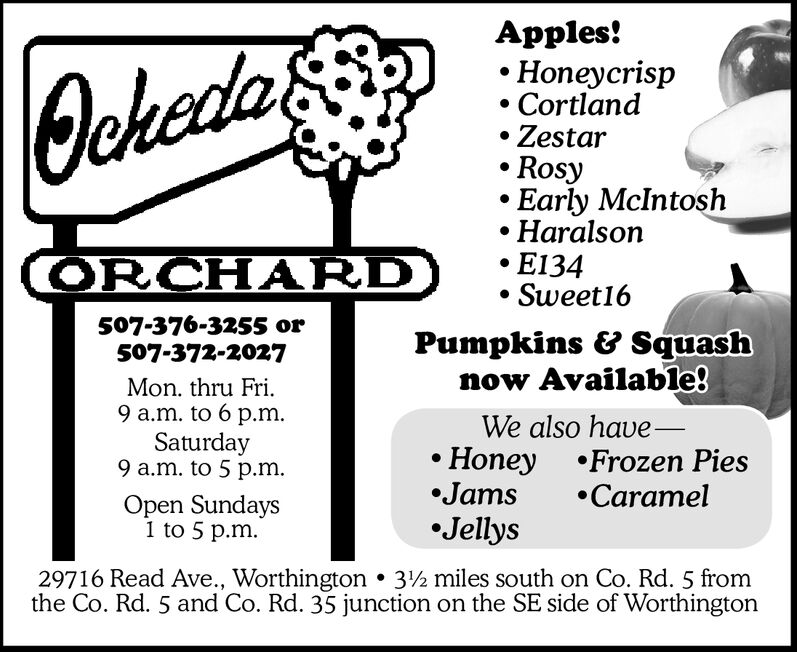 Apples!HoneycrispCortlandZestarRosyEarly McIntoshHaralsonE134Sweet16Jekeda& CppORCHARD507-376-3255 or507-372-2027Pumpkins & Squashnow Available!Mon. thru Fri.9 a.m. to 6 p.mSaturday9 a.m. to 5 p.mWe also have-Honey Frozen PiesJamsJellysCaramelOpen Sundays1 to 5 p.m29716 Read Ave., Worthington . 32 miles south on Co. Rd. 5 fromthe Co. Rd. 5 and Co. Rd. 35 junction on the SE side of Worthington Apples! Honeycrisp Cortland Zestar Rosy Early McIntosh Haralson E134 Sweet16 Jekeda& Cpp ORCHARD 507-376-3255 or 507-372-2027 Pumpkins & Squash now Available! Mon. thru Fri. 9 a.m. to 6 p.m Saturday 9 a.m. to 5 p.m We also have- Honey Frozen Pies Jams Jellys Caramel Open Sundays 1 to 5 p.m 29716 Read Ave., Worthington . 32 miles south on Co. Rd. 5 from the Co. Rd. 5 and Co. Rd. 35 junction on the SE side of Worthington