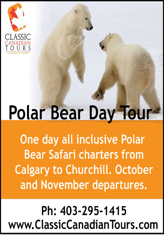 CLASSICCANADIANTOURSINCREDIBLE BY NATUREPolar Bear Day TourOne day all inclusive PolarBear Safari charters fromCalgary to Churchill. Octoberand November departures.Ph:403-295-1415www.ClassicCanadianTours.com CLASSIC CANADIAN TOURS INCREDIBLE BY NATURE Polar Bear Day Tour One day all inclusive Polar Bear Safari charters from Calgary to Churchill. October and November departures. Ph:403-295-1415 www.ClassicCanadianTours.com