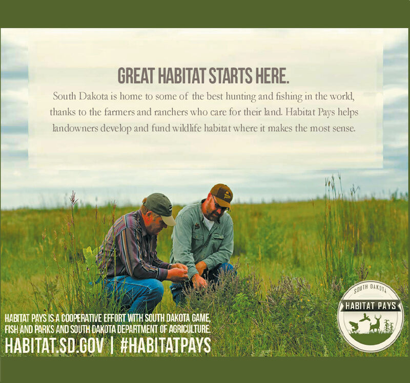 GREAT HABITAT STARTS HERESouth Dakota is home to some of the best hunting and fishing in the world,thanks to the farmers and ranchers who care for their land. Habitat Pays helpslandowners develop and fund wildlife habitat where it makes the most sense.OAKOTAHABITAT PAYSHABITAT PAYS IS A COOPERATIVE EFFORT WITH SOUTH DAKOTA GAMEFISH AND PARKS AND SOUTH DAKOTA DEPARTMENT OF AGRICULTUREHABITAT SD.GOV I #HABITATPAYS GREAT HABITAT STARTS HERE South Dakota is home to some of the best hunting and fishing in the world, thanks to the farmers and ranchers who care for their land. Habitat Pays helps landowners develop and fund wildlife habitat where it makes the most sense. OAKOTA HABITAT PAYS HABITAT PAYS IS A COOPERATIVE EFFORT WITH SOUTH DAKOTA GAME FISH AND PARKS AND SOUTH DAKOTA DEPARTMENT OF AGRICULTURE HABITAT SD.GOV I #HABITATPAYS