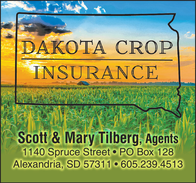 DAKOTA CROPINSURANCEScott &Mary Tilberg, Agents1140 Spruce Street PO Box 128Alexandria, SD 57311 605.239.4513 DAKOTA CROP INSURANCE Scott &Mary Tilberg, Agents 1140 Spruce Street PO Box 128 Alexandria, SD 57311 605.239.4513