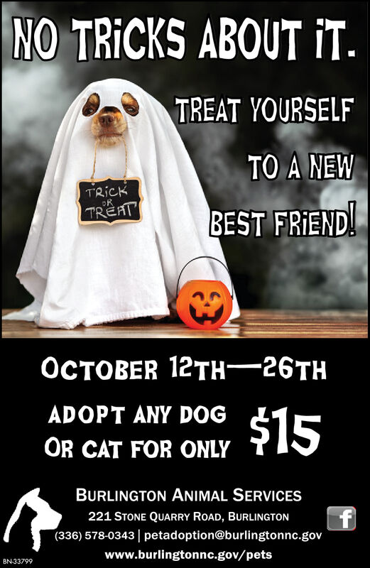 NO TRICKS ABOUT iT.TREAT YOURSELFTO A NEWTRICKRTREATBEST FRIEND!ER 12TH26ADOPT ANY DOG$15OR CAT FOR ONLYBURLINGTON ANIMAL SERVICESf(336) 578-0343 petadoption@burlingtonnc.gov221 STONE QUARRY ROAD, BURLINGTONwww.burlingtonnc.gov/petsBN-33799 NO TRICKS ABOUT iT. TREAT YOURSELF TO A NEW TRICK R TREAT BEST FRIEND! ER 12TH26 ADOPT ANY DOG $15 OR CAT FOR ONLY BURLINGTON ANIMAL SERVICES f (336) 578-0343 petadoption@burlingtonnc.gov 221 STONE QUARRY ROAD, BURLINGTON www.burlingtonnc.gov/pets BN-33799