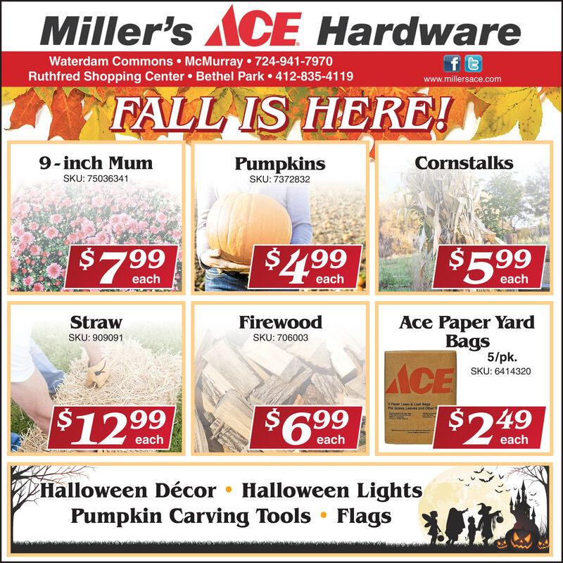 Miller'sACE HardwareWaterdam Commons McMurray 724-941-7970Ruthfred Shopping Center Bethel Park 412-835-4119f twww.millersace.comFALL IS HERE!PumpkinsSKU: 73728329-inch MumCornstalksSKU: 75036341$5. 99$7 99$4.99eacheacheachStrawFirewoodAce Paper YardBags5/pkSKU: 909091SKU: 706003$2.49SKU: 6414320S Paer La&Lat BageFor Grass aes and Cher e$6.99$12 .99eacheacheachHalloween Décor Halloween LightsPumpkin Carving Tools Flags Miller'sACE Hardware Waterdam Commons McMurray 724-941-7970 Ruthfred Shopping Center Bethel Park 412-835-4119 f t www.millersace.com FALL IS HERE! Pumpkins SKU: 7372832 9-inch Mum Cornstalks SKU: 75036341 $5. 99 $7 99 $4.99 each each each Straw Firewood Ace Paper Yard Bags 5/pk SKU: 909091 SKU: 706003  $2.49 SKU: 6414320 S Paer La&Lat Bage For Grass aes and Cher e $6.99 $12 .99 each each each Halloween Décor Halloween Lights Pumpkin Carving Tools Flags