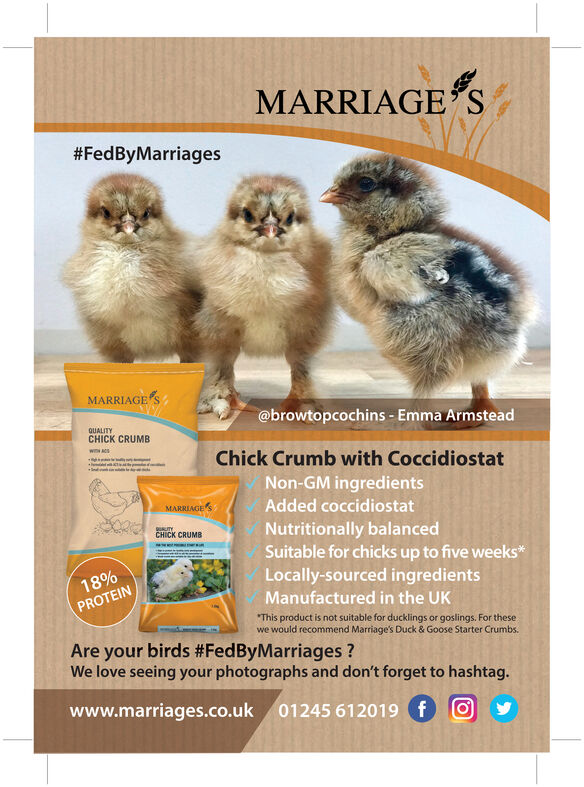 MARRIAGES#FedByMarriagesMARRIAGE S@browtopcochins - Emma ArmsteadQUALITYCHICK CRUMBwiH ACSChick Crumb with CoccidiostatNon-GM ingredientsAdded coccidiostatMARRIAGE'SNutritionally balancedSuitable for chicks up to five weeks*Locally-sourced ingredientsUUTYCHICK CRUMBww18%Manufactured in the UKPROTEINThis product is not suitable for ducklings or goslings. For thesewe would recommend Marriage's Duck & Goose Starter Crumbs.Are your birds #FedByMarriages?We love seeing your photographs and don't forget to hashtag.www.marriages.co.uk01245 612019 f MARRIAGES #FedByMarriages MARRIAGE S @browtopcochins - Emma Armstead QUALITY CHICK CRUMB wiH ACS Chick Crumb with Coccidiostat Non-GM ingredients Added coccidiostat MARRIAGE'S Nutritionally balanced Suitable for chicks up to five weeks* Locally-sourced ingredients UUTY CHICK CRUMB ww 18% Manufactured in the UK PROTEIN This product is not suitable for ducklings or goslings. For these we would recommend Marriage's Duck & Goose Starter Crumbs. Are your birds #FedByMarriages? We love seeing your photographs and don't forget to hashtag. www.marriages.co.uk 01245 612019 f