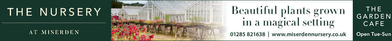 Beautiful plants grownin a magical setting01285 821638 www.miserdennursery.co.uk Open Tue-SunTHETHE NURSERYGARDENCAFEAT MISERDEN Beautiful plants grown in a magical setting 01285 821638 www.miserdennursery.co.uk Open Tue-Sun THE THE NURSERY GARDEN CAFE AT MISERDEN
