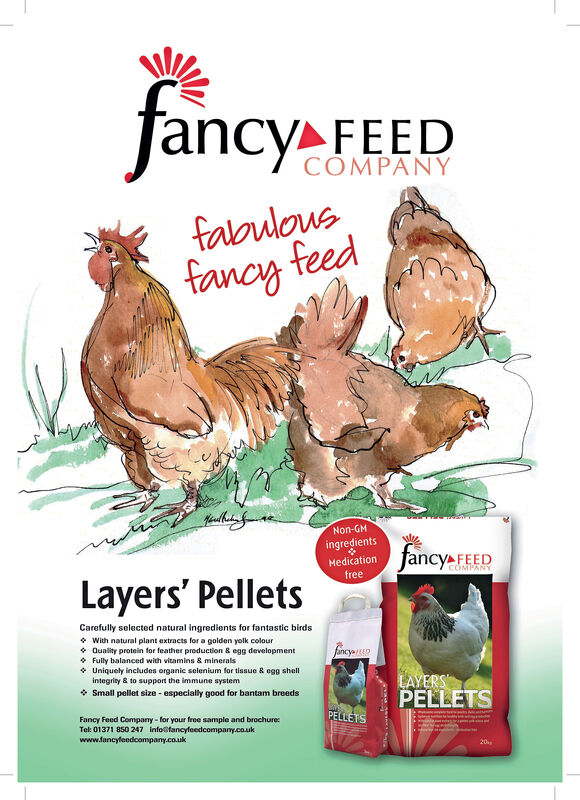 ncy FEEDCOMPANYfabulousfancy feedNon-GMingredientsfancy FEEDMedicationCOMPANYfreeLayers' PelletsCarefully selected natural ingredients for fantastic birdsWith natural plant extracts for a golden yolk colourQuality protein for feather production & egg developmentFully balanced with vitamins & minerals.Uniquely includes organic selenium for tissue & egg shella,JancyEEDintegrity& to support the immune sysstemLAYERSPELLETSSmall pellet size-especially good for bantam breedsPELLETSFancy Feed Company-for your free sample and brochure:Tel: 01371 850 247 info@fancyfeedcompany.co.ukwww.fancyleedcompany.co.uk20 ncy FEED COMPANY fabulous fancy feed Non-GM ingredients fancy FEED Medication COMPANY free Layers' Pellets Carefully selected natural ingredients for fantastic birds With natural plant extracts for a golden yolk colour Quality protein for feather production & egg development Fully balanced with vitamins & minerals. Uniquely includes organic selenium for tissue & egg shell a, JancyEED integrity& to support the immune sysstem LAYERS PELLETS Small pellet size-especially good for bantam breeds PELLETS Fancy Feed Company-for your free sample and brochure: Tel: 01371 850 247 info@fancyfeedcompany.co.uk www.fancyleedcompany.co.uk 20