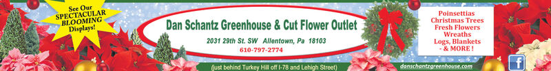 See OurSPECTACULARBLOOMINGDisplays!Dan Schantz Greenhouse & Cut Flower OutletPoinsettiasChristmas TreesFresh FlowersWreathsLogs, Blankets-& MORE!2031 29th St. SW Allentown, Pa 18103610-797-2774Gust behind Turkey Hill of 78 and Lehigh Street)donschantrgreenhouse.com See Our SPECTACULAR BLOOMING Displays! Dan Schantz Greenhouse & Cut Flower Outlet Poinsettias Christmas Trees Fresh Flowers Wreaths Logs, Blankets -& MORE! 2031 29th St. SW Allentown, Pa 18103 610-797-2774 Gust behind Turkey Hill of 78 and Lehigh Street) donschantrgreenhouse.com