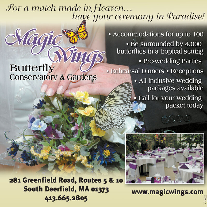 For a match made in Heaven.have your ceremony in Paradise!Mügic Accommodations for up to 100 Be surrounded by 4,000butterflies in a tropical settingMingsPre-wedding Parties Rehearsal Dinners  Receptions All inclusive weddingpackages availableCall for your weddingpacket todayButterflyConservatory & Gardens281 Greenfield Road, Routes 5 & 10South Deerfield, MA 01373www.magicwings.com413.665.280502286316 For a match made in Heaven. have your ceremony in Paradise! Mügic  Accommodations for up to 100  Be surrounded by 4,000 butterflies in a tropical setting Mings Pre-wedding Parties  Rehearsal Dinners  Receptions  All inclusive wedding packages available Call for your wedding packet today Butterfly Conservatory & Gardens 281 Greenfield Road, Routes 5 & 10 South Deerfield, MA 01373 www.magicwings.com 413.665.2805 02286316