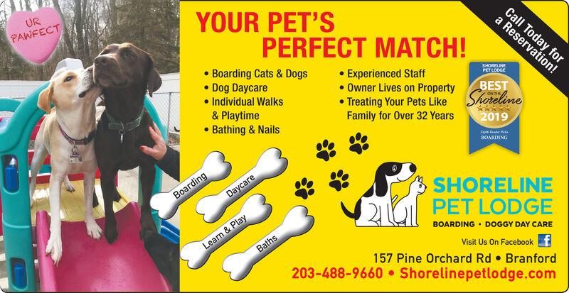URYOUR PET'SPAWFECTCall Today fora Reservation!PERFECT MATCH! Boarding Cats & Dogs Dog Daycare Individual Walks& Playtime Bathing & Nails Experienced Staff Owner Lives on Property Treating Your Pets LikeFamily for Over 32 YearsSHORELINEPET LODGEBESTShoreline2019BOARDINGSHORELINEPET LODGEBOARDING  DOGGY DAY CAREDaycareBoardingLearn & PlayBathsVisit Us On Facebook157 Pine Orchard Rd  Branford203-488-9660  Shorelinepetlodge.com UR YOUR PET'S PAWFECT Call Today for a Reservation! PERFECT MATCH!  Boarding Cats & Dogs  Dog Daycare  Individual Walks & Playtime  Bathing & Nails  Experienced Staff  Owner Lives on Property  Treating Your Pets Like Family for Over 32 Years SHORELINE PET LODGE BEST Shoreline 2019 BOARDING SHORELINE PET LODGE BOARDING  DOGGY DAY CARE Daycare Boarding Learn & Play Baths Visit Us On Facebook 157 Pine Orchard Rd  Branford 203-488-9660  Shorelinepetlodge.com