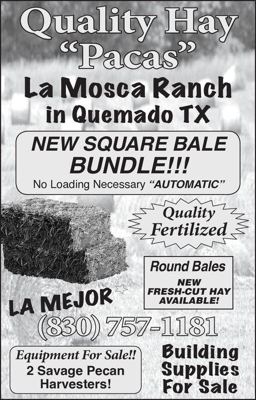 "Quality Hay$PacasLa Mosca Ranchin Quemado TXNEW SQUARE BALEBUNDLE!!!No Loading Necessary ""AUTOMATIC""QualityFertilizedRound BalesNEWFRESH-CUT HAYAVAILABLE!LA MEJOR(830) 757-1181BuildingSuppliesFor SaleEquipment For Sale!!2 Savage PecanHarvesters! Quality Hay $Pacas La Mosca Ranch in Quemado TX NEW SQUARE BALE BUNDLE!!! No Loading Necessary ""AUTOMATIC"" Quality Fertilized Round Bales NEW FRESH-CUT HAY AVAILABLE! LA MEJOR (830) 757-1181 Building Supplies For Sale Equipment For Sale!! 2 Savage Pecan Harvesters!"