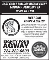 EAST COAST BULLDOG RESCUE EVENTSATURDAY, FEBRUARY 1510 AM TO 2 PMMEET OURADOPT A BULLS!Come join us at Eighty Four Agway foran adoption event! Meet some of ourdogs, learn about our incoming dogs,or put an application in for your futurecompanion! Not able to adopt?We can always use fosters!E.C.B.R.TAST COASTCALICODEIGHTY FOURCommunity?OfficialAGWAY*2019*BEST OF THEbest724-222-0600Observer-ReporterServing Outobserver-reporter.com1025 Route 519, Eighty Four, PA 15330Mon., Wed., Thurs., Fri. & Sat. - 8:00am-5pmTues. - 8:00am-6:30pm Closed SundayCommunityr-ReporteObserver-unity's Choice Awards.Since 1808 EAST COAST BULLDOG RESCUE EVENT SATURDAY, FEBRUARY 15 10 AM TO 2 PM MEET OUR ADOPT A BULLS! Come join us at Eighty Four Agway for an adoption event! Meet some of our dogs, learn about our incoming dogs, or put an application in for your future companion! Not able to adopt? We can always use fosters! E.C.B.R. TAST COAST CALICOD EIGHTY FOUR Community? Official AGWAY *2019* BEST OF THE best 724-222-0600 Observer-Reporter Serving Out observer-reporter.com 1025 Route 519, Eighty Four, PA 15330 Mon., Wed., Thurs., Fri. & Sat. - 8:00am-5pm Tues. - 8:00am-6:30pm Closed Sunday Community r-Reporte Observer- unity's Choice Awards. Since 1808