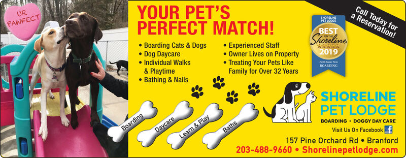 YOUR PET'SURPAWFECTCall Today fora Reservation!PERFECT MATCH! Boarding Cats & Dogs Dog Daycare Individual Walks& Playtime Bathing & NailsSHORELINEPET LOCGEBEST Experienced Staff Owner Lives on Property Treating Your Pets LikeFamily for Over 32 YearsShoreline2019BOARDINGSHORELINEDaycareLearn & PlayPET LODGEBOARDING  DOGGY DAY CAREVisit Us On Facebook157 Pine Orchard Rd  Branford203-488-9660  Shorelinepetlodge.comBoardingBaths YOUR PET'S UR PAWFECT Call Today for a Reservation! PERFECT MATCH!  Boarding Cats & Dogs  Dog Daycare  Individual Walks & Playtime  Bathing & Nails SHORELINE PET LOCGE BEST  Experienced Staff  Owner Lives on Property  Treating Your Pets Like Family for Over 32 Years Shoreline 2019 BOARDING SHORELINE Daycare Learn & Play PET LODGE BOARDING  DOGGY DAY CARE Visit Us On Facebook 157 Pine Orchard Rd  Branford 203-488-9660  Shorelinepetlodge.com Boarding Baths
