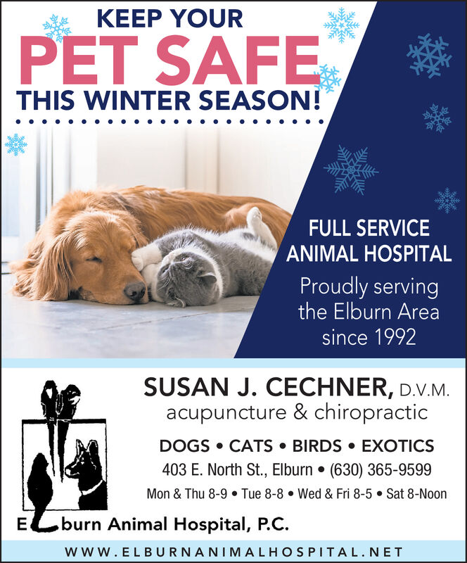KEEP YOURPET SAFETHIS WINTER SEASON!FULL SERVICEANIMAL HOSPITALProudly servingthe Elburn Areasince 1992SUSAN J. CECHNER, D.V.M.acupuncture & chiropracticDOGS  CATS  BIRDS  EXOTICS403 E. North St., Elburn  (630) 365-9599Mon & Thu 8-9  Tue 8-8  Wed & Fri 8-5  Sat 8-Noonburn Animal Hospital, P.C.Ecwww.ELBURNANIMALHOSPITAL.NET KEEP YOUR PET SAFE THIS WINTER SEASON! FULL SERVICE ANIMAL HOSPITAL Proudly serving the Elburn Area since 1992 SUSAN J. CECHNER, D.V.M. acupuncture & chiropractic DOGS  CATS  BIRDS  EXOTICS 403 E. North St., Elburn  (630) 365-9599 Mon & Thu 8-9  Tue 8-8  Wed & Fri 8-5  Sat 8-Noon burn Animal Hospital, P.C. Ec www.ELBURNANIMALHOSPITAL.NET