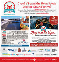 SOUTHCrawl a'Board the Nova ScotiaLobster Crawl FestivalEst.2018Sip, savour, shop, stay and explore OVER 150 DIFFERENT lobster experiencesfrom Barrington, the Lobster Capital of Canada,to Peggy's Cove andevery port in between! Festival.LobsterCrawl.caLOBSTER CRAWLFebruary 1-29, 2020LOBSTERCAPITAL-OF CANADA-LOBSTER CRAWLobsters practicallyLobster crawl up2 NIGHTSFOR 2WITH MEALScrawl uponto our beach! ucy is at theCrawl Holy crustacean is February going to be fun! We haye a lobster infused menuGETAWAY all month long, and lobster-themed events for the entire family. Come for liveHOW DO YOU GET READY FOR NOVA SCOTIA'S LOBSTER CRAWL?Join us in the Lobster Capital of Canada to kick off this year's Nova ScotiaLobster Crawl on February 2nd and see Lucy, our shadow seeking lobster!Indulge yourself in all things lobster, as we celebrate the South Shorestastiest festival all February long!SONGS OF THE SEA MUSIC SERIES - LOBSTER POUND TOURSWORKSHOPS - LOBSTER CURLING SPIEL - LOBSTER SUPPERSFRESH LOBSTER & SO MUCH MORE!entertainment, Valentines, a 'crawl' around the golf course, or a soak in the hot$544 tub. February is for lovers and lobster lovers. Crawl all day, then crawl into bedAoalme M har kan and drift off to a lallabye of crashing waves. Details onlineFEBRUARY 2: Lobster 101 & Lobster Roll-OffFEBRUARY 14: Valentine's DinnerFEBRUARY 15: Winter Surfing LessonsFEBRUARY 18: Skm Lobster CrawlFEBRUARY 22: On the Rocks. sip for a cause!FEBRUARY 23: Brush with Good CheerWHITE POINTBARRENGTON An eccan of BARRINGTONMUNICIPALITY.COMappertunity Canada's Lobster CapitalEST. 19281.800.565.5068 WHITEPOINT.COMVEGAPestaraHoCateringSysco BFLtsBAYHarinerFERRIESIRONWORKSingSALTBOXCHESTERGRAND BANKERAt the heart offood and serviceOne Sep AhedENOVA SCOTIAS THEASUREDISTILLARYBAR & GRILLAtlantic LotteryCommunity Prcud CAA Atlantic e onarTaL. PUSIONLIGHTHOUSENOW SALTWIRE STELIANETWORKNORTH AMERICANova Scotia South ShoreThe Nova Scotia Lobster Crawl is brought to you by the South Shore Tourism Co-operativeFind us onTourism Co-operative SOUTH Crawl a'Board the Nova Scotia Lobster Crawl Festival Est. 2018 Sip, savour, shop, stay and explore OVER 150 DIFFERENT lobster experiences from Barrington, the Lobster Capital of Canada,to Peggy's Cove and every port in between! Festival.LobsterCrawl.ca LOBSTER CRAWL February 1-29, 2020 LOBSTER CAPITAL -OF CANADA- LOBSTER CRAW Lobsters practically Lobster crawl up 2 NIGHTSFOR 2 WITH MEALS crawl up onto our beach! ucy is at the Crawl Holy crustacean is February going to be fun! We haye a lobster infused menu GETAWAY all month long, and lobster-themed events for the entire family. Come for live HOW DO YOU GET READY FOR NOVA SCOTIA'S LOBSTER CRAWL? Join us in the Lobster Capital of Canada to kick off this year's Nova Scotia Lobster Crawl on February 2nd and see Lucy, our shadow seeking lobster! Indulge yourself in all things lobster, as we celebrate the South Shores tastiest festival all February long! SONGS OF THE SEA MUSIC SERIES - LOBSTER POUND TOURS WORKSHOPS - LOBSTER CURLING SPIEL - LOBSTER SUPPERS FRESH LOBSTER & SO MUCH MORE! entertainment, Valentines, a 'crawl' around the golf course, or a soak in the hot $544 tub. February is for lovers and lobster lovers. Crawl all day, then crawl into bed Aoalme M har kan and drift off to a lallabye of crashing waves. Details online FEBRUARY 2: Lobster 101 & Lobster Roll-Off FEBRUARY 14: Valentine's Dinner FEBRUARY 15: Winter Surfing Lessons FEBRUARY 18: Skm Lobster Crawl FEBRUARY 22: On the Rocks. sip for a cause! FEBRUARY 23: Brush with Good Cheer WHITE POINT BARRENGTON An eccan of BARRINGTONMUNICIPALITY.COM appertunity Canada's Lobster Capital EST. 1928 1.800.565.5068 WHITEPOINT.COM VEGA Pestara Ho Catering Sysco BFLts BAY Hariner FERRIES IRONWORKS ing SALTBOX CHESTER GRAND BANKER At the heart of food and service One Sep Ahed ENOVA SCOTIAS THEASURE DISTILLARY BAR & GRILL Atlantic Lottery Community Prcud CAA Atlantic e onarTaL. PUSION LIGHTHOUSENOW SALTWIRE STELIA NETWORK NORTH AMERICA Nova Scotia South Shore The Nova Scotia Lobster Crawl is brought to you by the South Shore Tourism Co-operative Find us on Tourism Co-operative