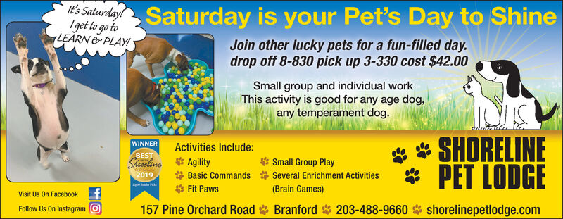It's Saturday!Iget to go toLEARN &PLAY!Saturday is your Pet's Day to ShineJoin other lucky pets for a fun-filled day.drop off 8-830 pick up 3-330 cost $42.00Small group and individual workThis activity is good for any age dog,any temperament dog.**WINNERActivities Include:AgilityBasic Commands* Fit Paws157 Pine Orchard Road BranfordSHORELINEBESTSmall Group PlaySeveral Enrichment Activities(Brain Games)* PET LODGEShoreline2019Visit Us On FacebookFollow Us On Instagram O203-488-9660shorelinepetlodge.com It's Saturday! Iget to go to LEARN &PLAY! Saturday is your Pet's Day to Shine Join other lucky pets for a fun-filled day. drop off 8-830 pick up 3-330 cost $42.00 Small group and individual work This activity is good for any age dog, any temperament dog. ** WINNER Activities Include: Agility Basic Commands * Fit Paws 157 Pine Orchard Road Branford SHORELINE BEST Small Group Play Several Enrichment Activities (Brain Games) * PET LODGE Shoreline 2019 Visit Us On Facebook Follow Us On Instagram O 203-488-9660 shorelinepetlodge.com