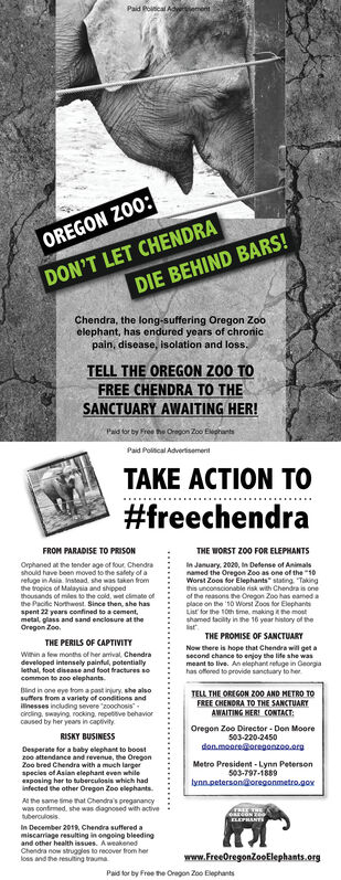 """Paid Poitical AderementOREGON Z00:DON'T LET CHENDRADIE BEHIND BARS!Chendra, the long-suffering Oregon Zooelephant, has endured years of chronicpain, disease, isolation and loss.TELL THE OREGON Z00 TOFREE CHENDRA TO THESANCTUARY AWAITING HER!Pad tor by Free he Oregon Zoo EegrantsPaid Poltcal AdverisementTAKE ACTION TO#freechendraFROM PARADISE TO PRISONTHE WORST Z00 FOR ELEPHANTSOrphaned at the tender age of four Chendrashould have been moved to the salety of aretuge in Asia. Instead. she was taken fromthe tropics of Malaysia and shippedthousands of miles to the cold, wet cimato ofthe Paciic Northwost. Since then, she hasspent 22 years confined to a cement,metal, glass and sand enclosure at theOregon Zoo.In January, 2020, in Defense of Animalsnamed the Oregon Zoo as one of the """"10Worst Zoos for Elephants"""" stating """"Takingthis unconscionable risk with Chendra is oneof he reasons the Oregon Zoo has eamed aplace on the 10 Worst Zoos for ElephantsList for the 10th time, makinghe mostshamed tacility in the 16 year history of theTHE PROMISE OF SANCTUARYTHE PERILS OF CAPTIVITYWinin a lew months of her arival. Chendradeveloped intensely painful, potentiallyNow there is hope that Chendra will get asecond chance to enjoy the life she wasmeant to live. An elephant refuge in Georgiahas offered to provide sanctuary to herBind in one eye troma past inury, she alsosuffers from a variety of conditions andilinesses including severe zoochosiscircling, swaying rocking repetve behaviorcaused by her years in captivityTELL THE OREGON ZO0 AND METRO TOFREE CHENDRA TO THE SANCTUARYAWAITING HERI CONTACT:Oregon Zoo Director - Don Moore503-220-2450dan.meore@oregonzoo.orgRISKY BUSINESSDesperate for a baby elephant to boostr0o attendance and revenue, the OregonZoo bred Chendra with a much largerspecies of Asian elephant even whilexposing her to tuberculosis which hadinfected the other Oregon Zoo elephants.Metro President - Lynn Peterson503-797-1889lynn.peterson@oregonmetro.goxAt the same time tmat """