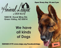 Open Every Day 10 am-2 pmArimol Lagueal-Theof GREEN VALLEY1600 W. Duval Mine Rd.Green Valley, AZ 85614We haveall kindsof Dogs520/625-3170 www.talgv.org Facebook/talgvMilo268419 Open Every Day 10 am-2 pm Arimol Lague al- The of GREEN VALLEY 1600 W. Duval Mine Rd. Green Valley, AZ 85614 We have all kinds of Dogs 520/625-3170 www.talgv.org Facebook/talgv Milo 268419