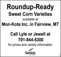Roundup-ReadySweet Corn Varietiesavailable atMon-Kota Inc. in Fairview, MTCall Lyle or Jewell at701-844-5300for prices and variety informationSeminisgrow forward268111 Roundup-Ready Sweet Corn Varieties available at Mon-Kota Inc. in Fairview, MT Call Lyle or Jewell at 701-844-5300 for prices and variety information Seminis grow forward 268111