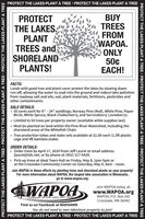 "PROTECT THE LAKES-PLANT A TREE  PROTECT THE LAKES-PLANT A TREEPROTECTTHE LAKESPLANTTREES andSHORELANDPLANTS!BUYTREESFROMWAPOA.ONLY50¢EACH!FACTS:Lands with good tree and plant cover protect the lakes by slowing downrun-off, allowing the water to soak into the ground and reduce lake pollutionfrom roadway salt and oils, soil, plant materials, fertilizers, pesticides andother contaminants.SALE DETAILS: 50 cents each for 8"" - 24"" seedlings; Norway Pine (Red), White Pine, PaperBirch, White Spruce, Black Chokecherry, and Serviceberry (Juneberry). Limited to 50 trees per property owner (available while supplies last)Must be planted on land within the Pine River Watershed, including theshoreland areas of the Whitefish ChainTree protection tubes and stake sets available at $1.00 each (1.5ft plasticcage and 4ft bamboo stake)ORDER DETAILS:Order trees by April 17, 2020 from Jeff Laurel at email addressjlaurel@tds.net, or by phone at (952) 217-9429. Pick-up trees at Ideal Town Hall on Friday, May 8, 1pm-5pm orat the Crosslake Community Center on Saturday, May 9, 9am - noon.Join WAPOA in these efforts by planting trees and shoreland plants on your property!For more information about WAPOA, the largest lake association in Minnesota,go to www.wapoa.org.WAPOAJoin WAPOA today at:www.WAPOA.orgWAPOA, P.O. Box 342Crosslake, MN 56442STEWARDS OF THE LAKES AND LANDFind us on Facebook at WAPOAMNYou do not need to own lakeshore property to join!PROTECT THE LAKES-PLANT A TREE  PROTECT THE LAKES-PLANT A TREEPROTECT THE LAKES-PLANT A TREE  PROTECT THE LAKES-PLANT A TREE  PROTECT THE LAKES-PLANT A TREEPROTECT THE LAKES-PLANT A TREE  PROTECT THE LAKES-PLANT A TREE  PROTECT THE LAKES-PLANT A TREE PROTECT THE LAKES-PLANT A TREE  PROTECT THE LAKES-PLANT A TREE PROTECT THE LAKES PLANT TREES and SHORELAND PLANTS! BUY TREES FROM WAPOA. ONLY 50¢ EACH! FACTS: Lands with good tree and plant cover protect the lakes by slowing down run-off, allowing the water to soak into the ground and reduce lake pollution from roadway salt and oils, soil, plant materials, fertilizers, pesticides and other contaminants. SALE DETAILS:  50 cents each for 8"" - 24"" seedlings; Norway Pine (Red), White Pine, Paper Birch, White Spruce, Black Chokecherry, and Serviceberry (Juneberry).  Limited to 50 trees per property owner (available while supplies last) Must be planted on land within the Pine River Watershed, including the shoreland areas of the Whitefish Chain Tree protection tubes and stake sets available at $1.00 each (1.5ft plastic cage and 4ft bamboo stake) ORDER DETAILS: Order trees by April 17, 2020 from Jeff Laurel at email address jlaurel@tds.net, or by phone at (952) 217-9429.  Pick-up trees at Ideal Town Hall on Friday, May 8, 1pm-5pm or at the Crosslake Community Center on Saturday, May 9, 9am - noon. Join WAPOA in these efforts by planting trees and shoreland plants on your property! For more information about WAPOA, the largest lake association in Minnesota, go to www.wapoa.org. WAPOA Join WAPOA today at: www.WAPOA.org WAPOA, P.O. Box 342 Crosslake, MN 56442 STEWARDS OF THE LAKES AND LAND Find us on Facebook at WAPOAMN You do not need to own lakeshore property to join! PROTECT THE LAKES-PLANT A TREE  PROTECT THE LAKES-PLANT A TREE PROTECT THE LAKES-PLANT A TREE  PROTECT THE LAKES-PLANT A TREE  PROTECT THE LAKES-PLANT A TREE PROTECT THE LAKES-PLANT A TREE  PROTECT THE LAKES-PLANT A TREE  PROTECT THE LAKES-PLANT A TREE"