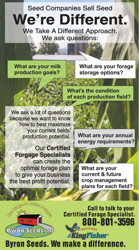 Seed Companies Sell SeedWe're Different.We Take A Different Approach.We ask questions:What are your milkproduction goals?What are your foragestorage options?What's the conditionof each production field?We ask a lot of questionsbecause we want to knowhow to best maximizeyour current fields'production potential. What are your annualenergy requirements?Our CertifiedForgage Specialistscan create theoptimal forage planto give your businessthe best profit potential.What are yourcurrent & futurecrop managementplans for each field?ForagesCall to talk to yourCertified Forage Specialist.800-801-3596The Bridge to BelterPREMUM SEEDSByron Seeds LGKingFisherByron Seeds. We make a difference. Seed Companies Sell Seed We're Different. We Take A Different Approach. We ask questions: What are your milk production goals? What are your forage storage options? What's the condition of each production field? We ask a lot of questions because we want to know how to best maximize your current fields' production potential. What are your annual energy requirements? Our Certified Forgage Specialists can create the optimal forage plan to give your business the best profit potential. What are your current & future crop management plans for each field? Forages Call to talk to your Certified Forage Specialist. 800-801-3596 The Bridge to Belter PREMUM SEEDS Byron Seeds LG KingFisher Byron Seeds. We make a difference.