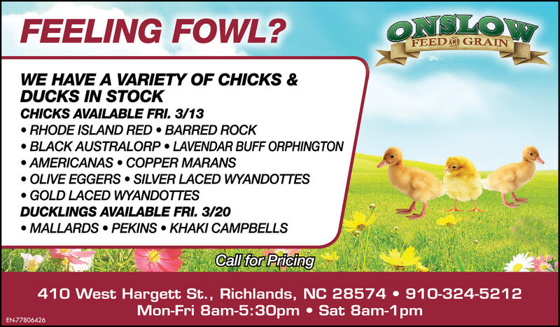 FEELING FOWL?ONLOWFEED A GRAINWE HAVE A VARIETY OF CHICKS &DUCKS IN STOCKCHICKS AVAILABLE FRI. 3/13 RHODE ISLAND RED  BARRED ROCK BLACK AUSTRALORP  LAVENDAR BUFF ORPHINGTON AMERICANAS  COPPER MARANS OLIVE EGGERS  SILVER LACED WYANDOTTES GOLD LACED WYANDOTTESDUCKLINGS AVAILABLE FRI. 3/20 MALLARDS  PEKINS  KHAKI CAMPBELLSCall for Pricing410 West Hargett St., Richlands, NC 28574  910-324-5212Mon-Fri 8am-5:30pm  Sat 8am-1pmEN-77806426 FEELING FOWL? ONLOW FEED A GRAIN WE HAVE A VARIETY OF CHICKS & DUCKS IN STOCK CHICKS AVAILABLE FRI. 3/13  RHODE ISLAND RED  BARRED ROCK  BLACK AUSTRALORP  LAVENDAR BUFF ORPHINGTON  AMERICANAS  COPPER MARANS  OLIVE EGGERS  SILVER LACED WYANDOTTES  GOLD LACED WYANDOTTES DUCKLINGS AVAILABLE FRI. 3/20  MALLARDS  PEKINS  KHAKI CAMPBELLS Call for Pricing 410 West Hargett St., Richlands, NC 28574  910-324-5212 Mon-Fri 8am-5:30pm  Sat 8am-1pm EN-77806426