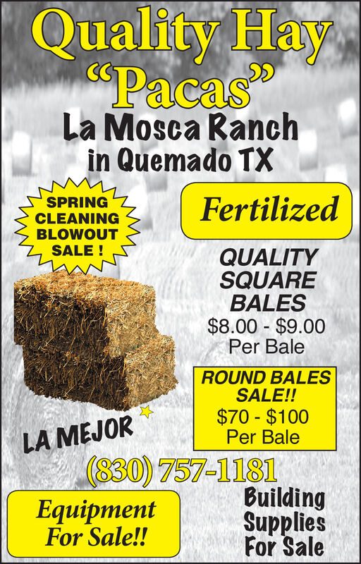 "Quality IHay""Pacas""La Mosca Ranchin Quemado TXFertilizedSPRINGCLEANINGBLOWOUTSALE !QUALITYSQUAREBALES$8.00 $9.00Per BaleROUND BALESSALE!!$70 - $100Per BaleLA MEJOR830) 757-1181EquipmentBuildingSuppliesFor SaleFor Sale!! Quality IHay ""Pacas"" La Mosca Ranch in Quemado TX Fertilized SPRING CLEANING BLOWOUT SALE ! QUALITY SQUARE BALES $8.00 $9.00 Per Bale ROUND BALES SALE!! $70 - $100 Per Bale LA MEJOR 830) 757-1181 Equipment Building Supplies For Sale For Sale!!"