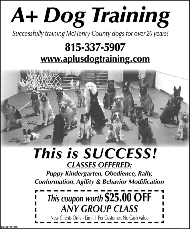 A+ Dog TrainingSuccessfully training McHenry County dogs for over 20 years!815-337-5907www.aplusdogtraining.comThis is SUCCESS!CLASSES OFFERED:Puppy Kindergarten, Obedience, Rally,Conformation, Agility & Behavior ModificationThis coupon worth $25.00 OFFANY GROUP CLASSNew Clients Only - Limit 1 Per Customer. No Cash ValueSM-CL1752291 A+ Dog Training Successfully training McHenry County dogs for over 20 years! 815-337-5907 www.aplusdogtraining.com This is SUCCESS! CLASSES OFFERED: Puppy Kindergarten, Obedience, Rally, Conformation, Agility & Behavior Modification This coupon worth $25.00 OFF ANY GROUP CLASS New Clients Only - Limit 1 Per Customer. No Cash Value SM-CL1752291