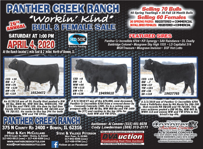 "PANTHER CREEK RANCH""Workin' Kind""BULL & FEMALE SALESelling 70 Bulls40 Spring Yearlings  30 Fall 18 Month BullsSelling 60 Females30 SPRING PAIRS: REGISTERED  COMMERCIAL30 FALL BRED FEMALES: REGISTERED  COMMRCIAL26THANNUALSATURDAY AT 1:00 PMFEATURED SIRESPanther Cr Incredible 6704  KR Synergy SAV Raindance  DL DuallyBaldridge Colonel  Musgrave ky High 1535  LD Capitalist 316MGRTreasure  Musgrave Invision  BSF Hot LottoHD 50KRestuls PendingAt the Ranch located 1 mile East & 2 miles North of Bowen, ILAPRIL 4, 2020CED +10BW +.7wW +76YW +129$W +76$B +119CED +8BW -.5wW +64YW +115$W +74$B +128CED +10BW -.7wW +57YW +101$W +56$B +118195244721949961019637765An 8/29/18 son of DL Dually that posted a BWw80 Ibs, BWR 96, wW 904 Ibs, WWR109, YW1378 Ibs and YWR 109. His dam by Syd GenSandy 0079 records BR4099, NR 40106 andYR 30102. He ranks in the top 3% for bothwW and YW EPDS.A 9/2/2018 ET son of the $70,000, now-deceased,Panther Cr Incredible 6704 from a revered donor byConnealy Comrade 1385. He is a calving easeprospect with a BW 80 Ibs, WW 868 Ibs and YW 1409Ibs (ET) and ran king in the top 10% forboth WW and YW EPDS.A 2/2/2019 son of Panther Cr Incredible 6704from a Pathfinder dam by MA Movin'On 396-200that records NR 80106 and YR 70104. Thisover-achiever posted a BW 90 Ibs, WW 845 Ib,WWR 113 and enjoys WW and YW EPDS in thebreed's top 4%.PANTHER CREEK RANCHAuctioneer: Al Conover (515) 491-8078ConoverAuchon SeaSole Maped375 N COUNTY RD 2400  BowEN, IL 62316MIKE & KATI MCCLELLANDCody Lowderman (309) 313-217120 Box 9 Baster, LA 50028AL & JEANNE CONOVER641-227-3537 641-227-3792 (FAX)DAVE SWEENEY 641-373-4340(www.conoverauction.comconover@conoverauction.comThis sale will be broadcast live on the internet.STEVE & VALERIE PETERSONWEST POINT, IL 62380217-842-5546 (HOME)217-430-9796 (ceu)375 N CouNTY RD 2400  Bowen, IL 62316217-842-5513 (HOME)  217-430-9356 (CELL)DVAuctionBroadcasting Real-Time AuctionsReal time bidd ing & proxy bidding available.www.PANTHERCREEKCATTLE.COMMIKE@PANTHERCREEKCATTLE.COMFollow us on Facebook! PANTHER CREEK RANCH ""Workin' Kind"" BULL & FEMALE SALE Selling 70 Bulls 40 Spring Yearlings  30 Fall 18 Month Bulls Selling 60 Females 30 SPRING PAIRS: REGISTERED  COMMERCIAL 30 FALL BRED FEMALES: REGISTERED  COMMRCIAL 26TH ANNUAL SATURDAY AT 1:00 PM FEATURED SIRES Panther Cr Incredible 6704  KR Synergy SAV Raindance  DL Dually Baldridge Colonel  Musgrave ky High 1535  LD Capitalist 316 MGRTreasure  Musgrave Invision  BSF Hot Lotto HD 50K Restuls Pending At the Ranch located 1 mile East & 2 miles North of Bowen, IL APRIL 4, 2020 CED +10 BW +.7 wW +76 YW +129 $W +76 $B +119 CED +8 BW -.5 wW +64 YW +115 $W +74 $B +128 CED +10 BW -.7 wW +57 YW +101 $W +56 $B +118 19524472 19499610 19637765 An 8/29/18 son of DL Dually that posted a BWw 80 Ibs, BWR 96, wW 904 Ibs, WWR109, YW 1378 Ibs and YWR 109. His dam by Syd Gen Sandy 0079 records BR4099, NR 40106 and YR 30102. He ranks in the top 3% for both wW and YW EPDS. A 9/2/2018 ET son of the $70,000, now-deceased, Panther Cr Incredible 6704 from a revered donor by Connealy Comrade 1385. He is a calving ease prospect with a BW 80 Ibs, WW 868 Ibs and YW 1409 Ibs (ET) and ran king in the top 10% for both WW and YW EPDS. A 2/2/2019 son of Panther Cr Incredible 6704 from a Pathfinder dam by MA Movin'On 396-200 that records NR 80106 and YR 70104. This over-achiever posted a BW 90 Ibs, WW 845 Ib, WWR 113 and enjoys WW and YW EPDS in the breed's top 4%. PANTHER CREEK RANCH Auctioneer: Al Conover (515) 491-8078Conover Auchon Sea Sole Maped 375 N COUNTY RD 2400  BowEN, IL 62316 MIKE & KATI MCCLELLAND Cody Lowderman (309) 313-2171 20 Box 9 Baster, LA 50028 AL & JEANNE CONOVER 641-227-3537 641-227-3792 (FAX) DAVE SWEENEY 641-373-4340 (www.conoverauction.com conover@conoverauction.com This sale will be broadcast live on the internet. STEVE & VALERIE PETERSON WEST POINT, IL 62380 217-842-5546 (HOME) 217-430-9796 (ceu) 375 N CouNTY RD 2400  Bowen, IL 62316 217-842-5513 (HOME)  217-430-9356 (CELL) DVAuction Broadcasting Real-Time Auctions Real time bidd ing & proxy bidding available. www.PANTHERCREEKCATTLE.COM MIKE@PANTHERCREEKCATTLE.COM Follow us on Facebook!"