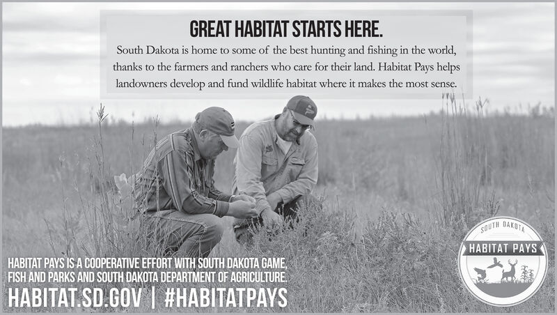 GREAT HABITAT STARTS HERE.South Dakota is home to some of the best hunting and fishing in the world,thanks to the farmers and ranchers who care for their land. Habitat Pays helpslandowners develop and fund wildlife habitat where it makes the most sense.SOUTH DAKOTHABITAT PAYSHABITAT PAYS IS A COOPERATIVE EFFORT WITH SOUTH DAKOTA GAME,FISH AND PARKS AND SOUTH DAKOTA DEPARTMENT OF AGRICULTURE.HABITAT.SD.GOV | #HABITATPAYS GREAT HABITAT STARTS HERE. South Dakota is home to some of the best hunting and fishing in the world, thanks to the farmers and ranchers who care for their land. Habitat Pays helps landowners develop and fund wildlife habitat where it makes the most sense. SOUTH DAKOT HABITAT PAYS HABITAT PAYS IS A COOPERATIVE EFFORT WITH SOUTH DAKOTA GAME, FISH AND PARKS AND SOUTH DAKOTA DEPARTMENT OF AGRICULTURE. HABITAT.SD.GOV | #HABITATPAYS