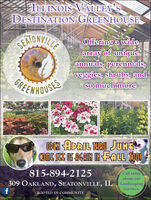 ILLINOIS VALLEY'SDESTINATION GREENHOUSESEAONVILLEOffering a widearray of uniqueannuals, perennials,veggies, shrubs, andso much moreHEEWHOUSESOPEN APRIL MARU JUNE815-894-2125Call todayabout our309 OAKLAND, SEATONVILLE, ILLandscapingServices.ROOTED IN COMMUNITY....... ILLINOIS VALLEY'S DESTINATION GREENHOUSE SEAONVILLE Offering a wide array of unique annuals, perennials, veggies, shrubs, and so much more HEEWHOUSES OPEN APRIL MARU JUNE 815-894-2125 Call today about our 309 OAKLAND, SEATONVILLE, IL Landscaping Services. ROOTED IN COMMUNITY .......