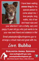 I have been waitingso000 long for myspecial person tocome adopt me. Ilove people, longwalks, lots of earand head rubs andyour attention! I am a chatty, spry andpeppy 8 year old guy who just wants to beyour new best friend and sidekick in life!Email petadoption@burlingtonnc.gov toarrange a virtual meet and greet with me.Love. BubbaBURLINGTON ANIMAL SERVICESwww.burlingtonNC.gov/petspetadoption@burlingtonnc.gov221 STONE QUARRY ROAD | (336) 578-0343BN-42018 I have been waiting so000 long for my special person to come adopt me. I love people, long walks, lots of ear and head rubs and your attention! I am a chatty, spry and peppy 8 year old guy who just wants to be your new best friend and sidekick in life! Email petadoption@burlingtonnc.gov to arrange a virtual meet and greet with me. Love. Bubba BURLINGTON ANIMAL SERVICES www.burlingtonNC.gov/pets petadoption@burlingtonnc.gov 221 STONE QUARRY ROAD | (336) 578-0343 BN-42018