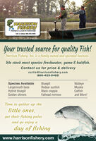 HARRISONFISHERYPOND & LAKE STOCKINGCall us todayl 660.423.5482Your trusted source for quality Fish!Harrison Fishery, Inc. is a family owned and operated business.We stock most species freshwater, game & baitfish.Contact us for price & deliverycurtis@harrisonfishery.com660-423-5482Species AvailableLargemouth bassHybrid bluegillGolden shinersBluegillRedear sunfishWalleyeMuskieCatfishand More!Black crappieFathead minnowTime to gather up thelittle ones,get their fishing polesand go enjoy aday of fishingwww.harrisonfishery.com HARRISON FISHERY POND & LAKE STOCKING Call us todayl 660.423.5482 Your trusted source for quality Fish! Harrison Fishery, Inc. is a family owned and operated business. We stock most species freshwater, game & baitfish. Contact us for price & delivery curtis@harrisonfishery.com 660-423-5482 Species Available Largemouth bass Hybrid bluegill Golden shiners Bluegill Redear sunfish Walleye Muskie Catfish and More! Black crappie Fathead minnow Time to gather up the little ones, get their fishing poles and go enjoy a day of fishing www.harrisonfishery.com