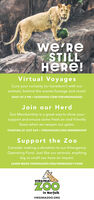 we'ReSTILLRe!Virtual VoyagesCure your curiosity (or boredom!) with ouranimals, behind-the-scenes footage and more!DAILY AT 2 PM  FACEBOOK.COM/THEVIRGINIAZOOJoin our HerdZoo Membership is a great way to show yoursupport and ensure some fresh air and friendlyfaces when we reopen our gates.STARTING AT JUST S69  VIRGINIAZO0.ORG/MEMBERSHIPSupport the ZooConsider making a donation to our EmergencyOperating Fund. Just like our animals, anythingbig or small can have an impact.LEARN MORE VIRGINIAZO0.ORG/EMERGENCY-FUNDVIRGINIAZOOin NorfolkVIRGINIAZO0.ORG we'Re STILL Re! Virtual Voyages Cure your curiosity (or boredom!) with our animals, behind-the-scenes footage and more! DAILY AT 2 PM  FACEBOOK.COM/THEVIRGINIAZOO Join our Herd Zoo Membership is a great way to show your support and ensure some fresh air and friendly faces when we reopen our gates. STARTING AT JUST S69  VIRGINIAZO0.ORG/MEMBERSHIP Support the Zoo Consider making a donation to our Emergency Operating Fund. Just like our animals, anything big or small can have an impact. LEARN MORE VIRGINIAZO0.ORG/EMERGENCY-FUND VIRGINIA ZOO in Norfolk VIRGINIAZO0.ORG