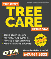THE BESTMember of International Society of ArboristsTREEAREIN THE GTA! TREE & STUMP REMOVAL PROPERTY/YARD CLEARING PRUNING & HEDGE TRIMMINGSPRINGCLEAN-UPSPECIALISTS! ARBORIST REPORTS & PERMITSWe Are Ready For Your Call.GTATREES.CA647.961.6533 THE BEST Member of International Society of Arborists TREE ARE IN THE GTA!  TREE & STUMP REMOVAL  PROPERTY/YARD CLEARING  PRUNING & HEDGE TRIMMING SPRING CLEAN-UP SPECIALISTS!  ARBORIST REPORTS & PERMITS We Are Ready For Your Call. GTA TREES.CA 647.961.6533