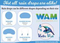 Not all rain drops are alike!Rain drops can be different shapes depending on their sizeWAMARIZONA WATER AWARENESS MONTHSPHEREHAMBURGERSmallMedium(1 mm or less)(2 mm)Water WideKIDNEYPARACHUTELarge(3 mm)X-Large(>4.5 mm)www.waterwise.arizona.eduI8S8LZNDIM Not all rain drops are alike! Rain drops can be different shapes depending on their size WAM ARIZONA WATER AWARENESS MONTH SPHERE HAMBURGER Small Medium (1 mm or less) (2 mm) Water Wide KIDNEY PARACHUTE Large (3 mm) X-Large (>4.5 mm) www.waterwise.arizona.edu I8S8LZNDIM