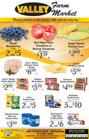"FarmVALLEY Market""Bringing freshness to your family's table each and every day.""FreshRed Ripe PlumTomatoes orSugar SweetFlorida CornBlueberriesSlicing TomatoesPackagedPints5 Pack2 rom $5$139 .$299FORea.John F. MartinSmoked TurkeyBreastCooperCV Sharp CheeseSliced or Chunks$699$599.John F. MartinButter QuartersHatfieldSliced Bacon1b. PackageFOLAMMICDiamondShelled WalnutsDIAMONDSated or Unsalted  1 b.16 az.$299$549$499DIAMONDea.ea.LayLay'sPotato ChipsTastykakeFamily PacksASTARLaysAssorted  Doublicous andClussiaAssorted  58o.Sensabiles Not includedASTYKAKE5.$10KandyKakeFORFOREntenmann'sMaxwell HouseWake UpRoast Coffee23 oz.Little BitesMAWELLHOUSE MarwELLHOUSEor Mini-CakesAssorted 688-138 ozlittle""Bites$3992 $6Mini CakesFORValey Farm Markst an CardMoney Orders are aways valableONE GREAT LOCATION SERVING THE LEHIGH VALLEY!1880 STEFKO BLVD., BETHLEHEM610-867-4600Sunday 8am - 5pm, Monday thru Saturday 8am - 7pmwww.SHOPVALLEYFARM.COMSPECIALS GOODWED. APRIL 15 THRU SUN APRIL 191516171819   Farm VALLEY Market ""Bringing freshness to your family's table each and every day."" Fresh Red Ripe Plum Tomatoes or Sugar Sweet Florida Corn Blueberries Slicing Tomatoes Packaged Pints 5 Pack 2 rom $5 $139 . $299 FOR ea. John F. Martin Smoked Turkey Breast Cooper CV Sharp Cheese Sliced or Chunks $699 $599. John F. Martin Butter Quarters Hatfield Sliced Bacon 1b. Package FOLAMMIC Diamond Shelled Walnuts DIAMOND Sated or Unsalted  1 b. 16 az. $299 $549 $499 DIAMOND ea. ea. Lay Lay's Potato Chips Tastykake Family Packs ASTAR Lays Assorted  Doublicous and Clussia Assorted  58o. Sensabiles Not included ASTYKAKE 5.$10 Kandy Kake FOR FOR Entenmann's Maxwell House Wake Up Roast Coffee 23 oz. Little Bites MAWELL HOUSE MarwELL HOUSE or Mini-Cakes Assorted 688-138 oz little ""Bites $399 2 $6 Mini Cakes FOR Valey Farm Markst an Card Money Orders are aways valable ONE GREAT LOCATION SERVING THE LEHIGH VALLEY! 1880 STEFKO BLVD., BETHLEHEM 610-867-4600 Sunday 8am - 5pm, Monday thru Saturday 8am - 7pm www.SHOPVALLEYFARM.COM SPECIALS GOOD WED. APRIL 15 THRU SUN APRIL 19 15 16 17 18 19"