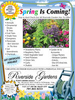 """OPENHOUSEMOTHER'SSpring Is Coming!DAYWEEKEND!Stop In And Check Out All Riverside Garden Has To Offer: Annuals OrnamentalShrubs& Trees Fruit Trees Shade Trees Evergreens Perennials- Best SelectionIn The Area SoilAmendments Strawberry Plants Raspberry Plants Bulk Vegetable Seed Seed Potatoes Onion Sets Garlic Shallots Garden Art &Accessories ChemicalsGIFT CERTIFICATESAVAILABLE!- Unique Planters- Miniature Gardens- Eclectic,One Of A Kind Arts- Iron Art""""CREATING OUTDOOR ELEGANCE WITH A PERSONAL TOUCH""""RiversideGardensA PLANTS GROWN LOCALLYMay - Mid June Ext. Hours: 9:30 AM To 7:30 PM Monday - Friday9:30 AMTO 5:00 PM Saturday  12:00 Noon To 4:00 PM Sunday1127 11TH AVE SWw, VALLEY CITYRemember Us ForMother's Day,Memorial Day &Father's Day!We Always Have ThePerfect Gift!701-845-0233 OPEN HOUSE MOTHER'S Spring Is Coming! DAY WEEKEND! Stop In And Check Out All Riverside Garden Has To Offer:  Annuals  Ornamental Shrubs & Trees  Fruit Trees  Shade Trees  Evergreens  Perennials - Best Selection In The Area  Soil Amendments  Strawberry Plants  Raspberry Plants  Bulk Vegetable Seed  Seed Potatoes  Onion Sets  Garlic  Shallots  Garden Art & Accessories  Chemicals GIFT CERTIFICATES AVAILABLE! - Unique Planters - Miniature Gardens - Eclectic, One Of A Kind Arts - Iron Art """"CREATING OUTDOOR ELEGANCE WITH A PERSONAL TOUCH"""" Riverside Gardens A PLANTS GROWN LOCALLY May - Mid June Ext. Hours: 9:30 AM To 7:30 PM Monday - Friday 9:30 AMTO 5:00 PM Saturday  12:00 Noon To 4:00 PM Sunday 1127 11TH AVE SWw, VALLEY CITY Remember Us For Mother's Day, Memorial Day & Father's Day! We Always Have The Perfect Gift! 701-845-0233"""