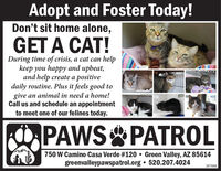 Adopt and Foster Today!Don't sit home alone,GET A CAT!During time of crisis, a cat can helpkeep you happy and upbeat,and help create a positivedaily routine. Plus it feels good togive an animal in need a home!Call us and schedule an appointmentto meet one of our felines today.PAWS PATROL750 W Camino Casa Verde #120  Green Valley, AZ 85614greenvalleypawspatrol.org  520.207.4024287888 Adopt and Foster Today! Don't sit home alone, GET A CAT! During time of crisis, a cat can help keep you happy and upbeat, and help create a positive daily routine. Plus it feels good to give an animal in need a home! Call us and schedule an appointment to meet one of our felines today. PAWS PATROL 750 W Camino Casa Verde #120  Green Valley, AZ 85614 greenvalleypawspatrol.org  520.207.4024 287888