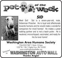 pet weekof theSIDMeet Sid!Sid is a seven-year-old, male,Doberman Pinscher. He is loyal and affectionatetowards humans and he would make a wonderfulcompanion for most homes! He makes a greatwalking partner and is not a leash puller. He isneutered, microchipped, vaccinated, and ready forhis fur-ever home!Washington Area Humane Society724-222-7387 I Daily 12-5pm1527 Rt. 136 I Eighty Four, PA 15330www.washingtonpashelter.orgSponsoredbyWASHINGTON AUTO MALLThanks Angie! pet week of the SID Meet Sid! Sid is a seven-year-old, male, Doberman Pinscher. He is loyal and affectionate towards humans and he would make a wonderful companion for most homes! He makes a great walking partner and is not a leash puller. He is neutered, microchipped, vaccinated, and ready for his fur-ever home! Washington Area Humane Society 724-222-7387 I Daily 12-5pm 1527 Rt. 136 I Eighty Four, PA 15330 www.washingtonpashelter.org Sponsored by WASHINGTON AUTO MALL Thanks Angie!