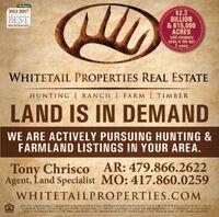 LndReport2011-2017$2.3BILLION& 615,000ACRESsold companywide in the last5 yearsAMERLCA'SBESTBROKERAGESWHITETAIL PROPERTIES REAL ESTATEHUNTING RANCH  FARM   TIMBERLAND IS IN DEMANDWE ARE ACTIVELY PURSUING HUNTING &FARMLAND LISTINGS IN YOUR AREA.Tony Chrisco AR: 479.866.2622Agent, Land Specialist MO: 417.860.0259WHITETAILPROPERTIES.COMWhters I Frosertes Real Estate, 1Edba Whtersil Prosertias   Nerassa k Varh Daketa DEA Whretak Iraphy Proparties Rea Estate C ie in 1, M0, A, KS, KY NE S CK - Car Pa2, Brotat   lie nAR,GA, MA, ND. IN, SD a WI- Evsns, 3 uke ie in OH & FA- Ki. Gilbt Broker  Lk. hAM & DX - Jory Eelingo Ereker   Lic in IN - John Joysen, Broker Le. in LA, US CA & AL - Slil Stewat Brokarlie in TN Chrs Wakzricid, Areter Lic in TN Bahby Peners. Bracer  Lc. AF Jahnny B: 1, Broker Le.r SC Fick Elict, Brcker Lie in N: Rich Baugh, Broker Lic. Brandan Crepsey. Braicer LndReport 2011-2017 $2.3 BILLION & 615,000 ACRES sold company wide in the last 5 years AMERLCA'S BEST BROKERAGES WHITETAIL PROPERTIES REAL ESTATE HUNTING RANCH  FARM   TIMBER LAND IS IN DEMAND WE ARE ACTIVELY PURSUING HUNTING & FARMLAND LISTINGS IN YOUR AREA. Tony Chrisco AR: 479.866.2622 Agent, Land Specialist MO: 417.860.0259 WHITETAILPROPERTIES.COM Whters I Frosertes Real Estate, 1Edba Whtersil Prosertias   Nerassa k Varh Daketa DEA Whretak Iraphy Proparties Rea Estate C ie in 1, M0, A, KS, KY NE S CK - Car Pa2, Brotat   lie nAR, GA, MA, ND. IN, SD a WI- Evsns, 3 uke ie in OH & FA- Ki. Gilbt Broker  Lk. hAM & DX - Jory Eelingo Ereker   Lic in IN - John Joysen, Broker Le. in LA, US CA & AL - Slil Stewat Brokar lie in TN Chrs Wakzricid, Areter Lic in TN Bahby Peners. Bracer  Lc. AF Jahnny B: 1, Broker Le.r SC Fick Elict, Brcker Lie in N: Rich Baugh, Broker Lic. Brandan Crepsey. Braicer